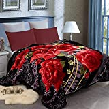 JML Heavy Blanket Queen(79'x93', 8lbs), Korean Style Fleece Blanket - Plush Soft Warm 2 Ply Printed Raschel Bed Blankets
