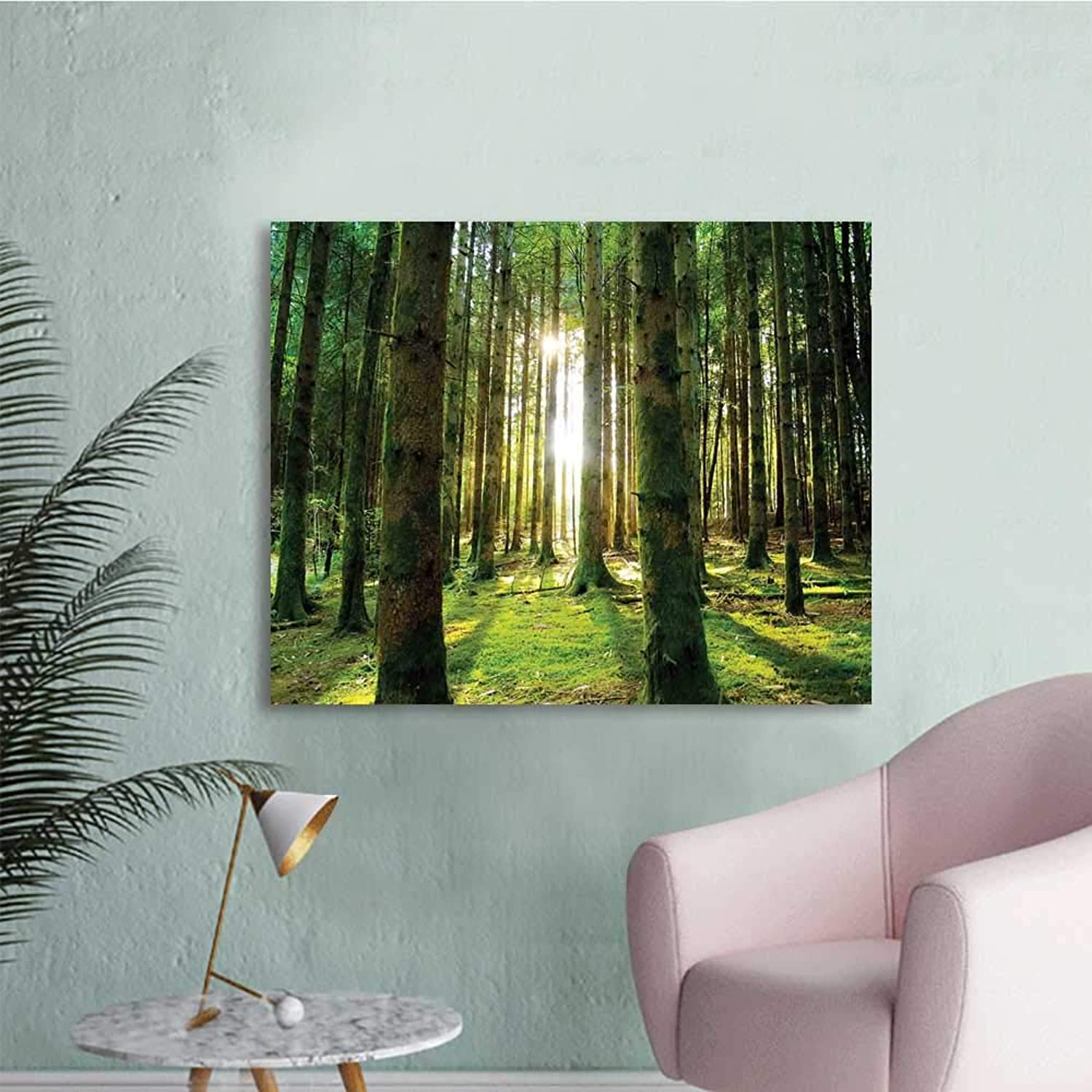 Forest, Art Decor Decals Stickers Scenic Scenery with Sunbeams in The Forest Sunny Summer Day Morning View Picture W36 xL32 Wall Decals for Kids