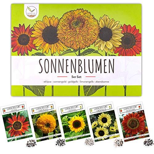 Farbenfrohe Sonnenblumen Samen mit hoher Keimrate - Blumensamen für einen bunten & bienenfreundlichen Garten (5er Set)