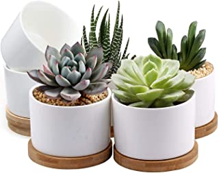 Succulent Pots White Mini 3.15 inch Ceramic Flower Planter Pot with Bamboo Tray, Pack of 6 (Plants NOT Included)