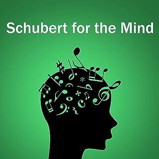 Schubert: Sonata For Arpeggione And Piano In A Minor, D. 821 - 2. Adagio (Live)