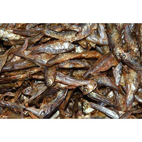 Zierfischtreff.de Getrocknete Fische Hundesnack, Katzensnack, 1 kg