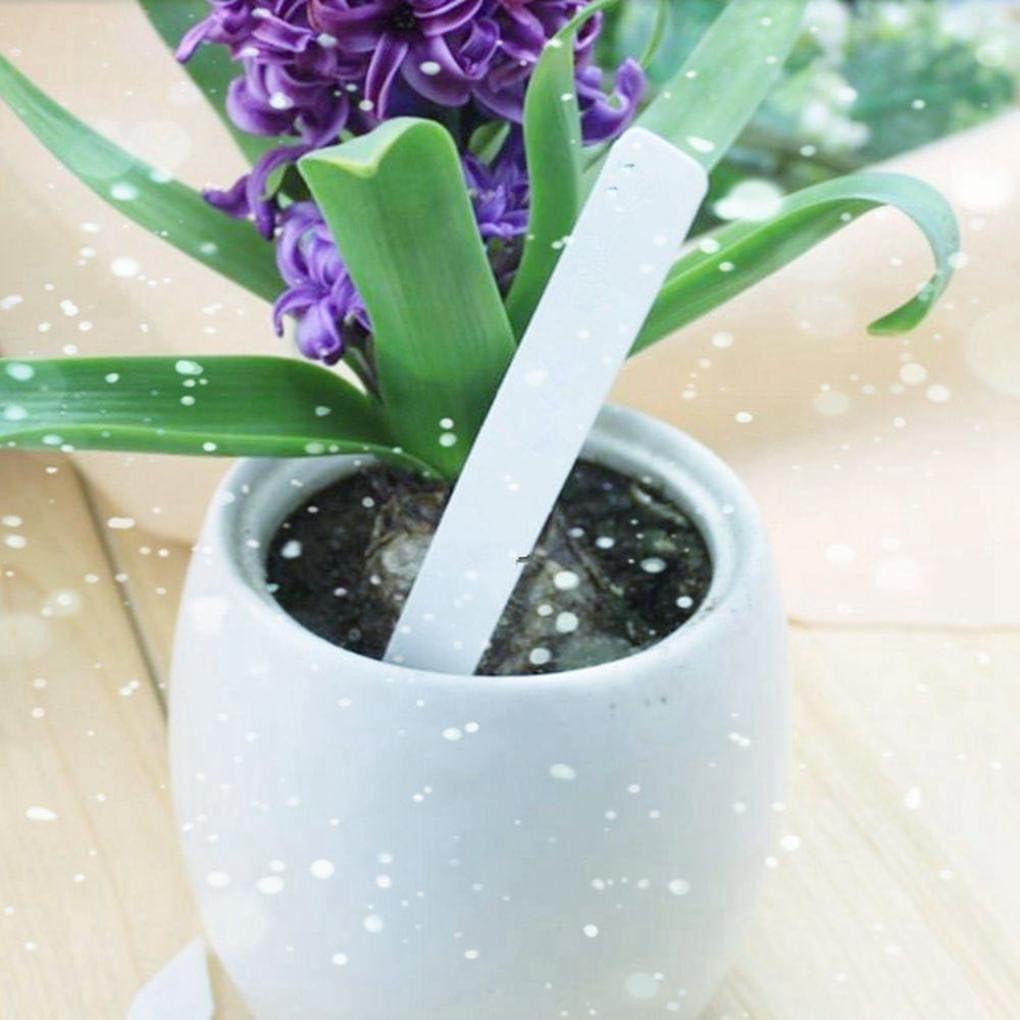 100Pcs  Plastic Plant Seed Labels Pot Marker Nursery Garden Stake Tags  10cm*2cm