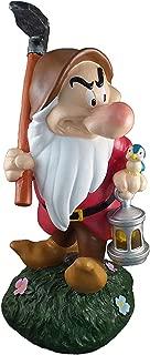 Best disney garden gnomes Reviews