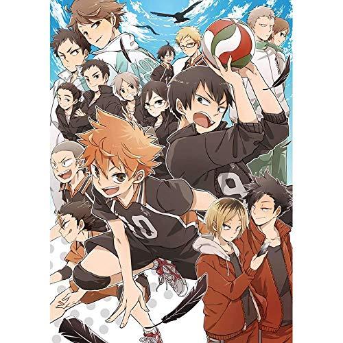 Haikyuu! - Póster de anime, 28 x 43 cm