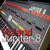 Immagine 1 for roland juno 106 the