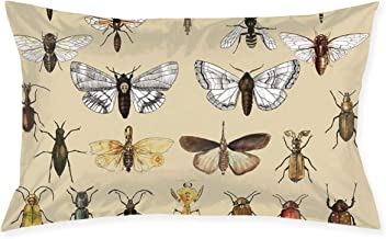 Throw Pillow Cover Entomology Insect Studies Collection Cushion Covers Pillowcase Pillow Shams Home Decor for Sofa Couch B...