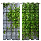 Cortinas opacas con estampado digital de paredes grises y hojas verdes, cortinas de aislamiento térmico que oscurecen la habitación y cortinas con ojales para sala de estar, dormitorio, 2 paneles