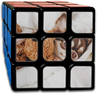 Custom 3x3 Mens Puzzle Toys Best Brain Training Toys 3x3x3 Cute Chihuahua Dog Animal 3x3 Magic Speed Cube Party Game for Boys Girls Kids Toddlers-55mm