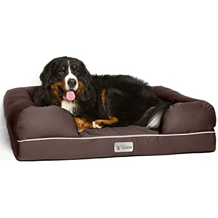 PetFusion Ultimate Orthopedic Dog Bed | Solid CertiPUR-US Memory Foam | Multiple Sizes/Colors, Medium Firmness Bolster, Waterproof Liner, Breathable 35% Cotton Cover | Cert. Skin Safe | 3yr Warranty