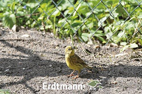 Erdtmanns Sommer-Streufutter im Eimer, 1er Pack (1 x 5 kg) - 3