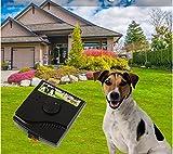 Valla eléctrica para Perros 2 en 1, Sistema de contención Impermeable para Mascotas con batería Forcefield Valla para Mascotas al Aire Libre para Perros