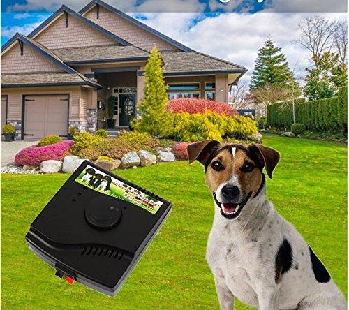 Valla eléctrica para Perros 2 en 1, Sistema de contención Impermeable para...