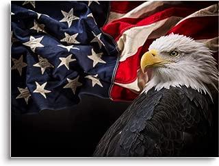Best patriotic eagle photos Reviews