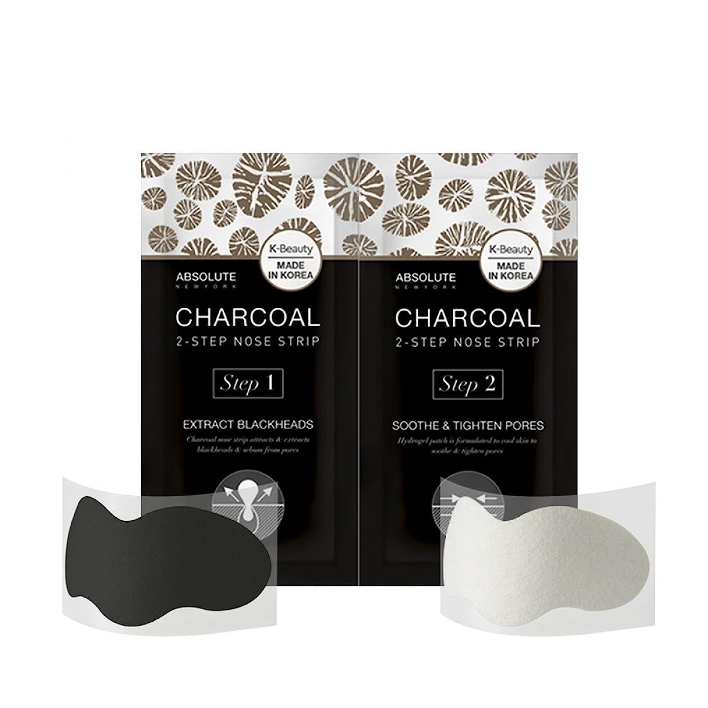 燃やすアルコール持ってる(3 Pack) ABSOLUTE Charcoal 2-Step Nose Strip (並行輸入品)
