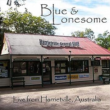 Live from Harrietville Australia