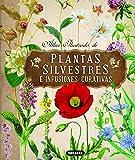 Plantas Silvestres e infusiones curativas (Atlas Ilustrado)