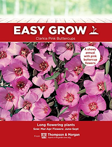 Thompson & ‿Morgan Easygrow Clarkia Pink Buttercups 750 graines