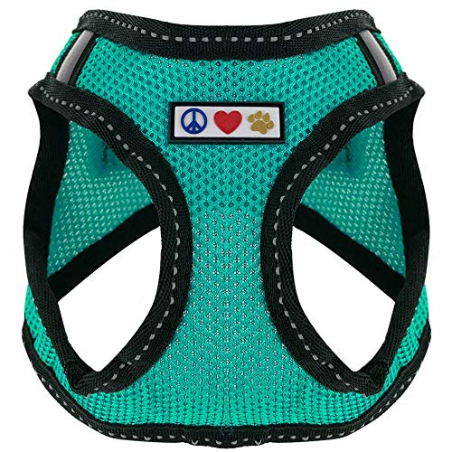 Pawtitas Pet Reflective Mesh Dog Harness, Step in or Vest Harness, Comfort Control, Training Walking of Your Puppy/Dog XXS Extra Extra Small Aquamarine Teal Dog Harness