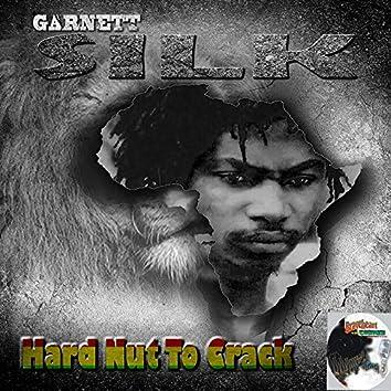 Hard Nut to Crack
