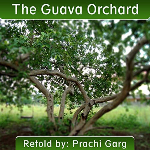 The Guava Orchard audiobook cover art