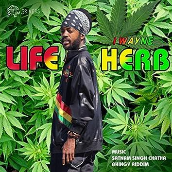 Life Herb (feat. Satnam Singh Chatha & Bhingy Riddim)