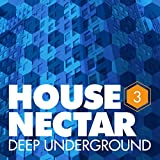 Play On (feat. Frank H. Carter III and Diore) (Instrumental Mix)