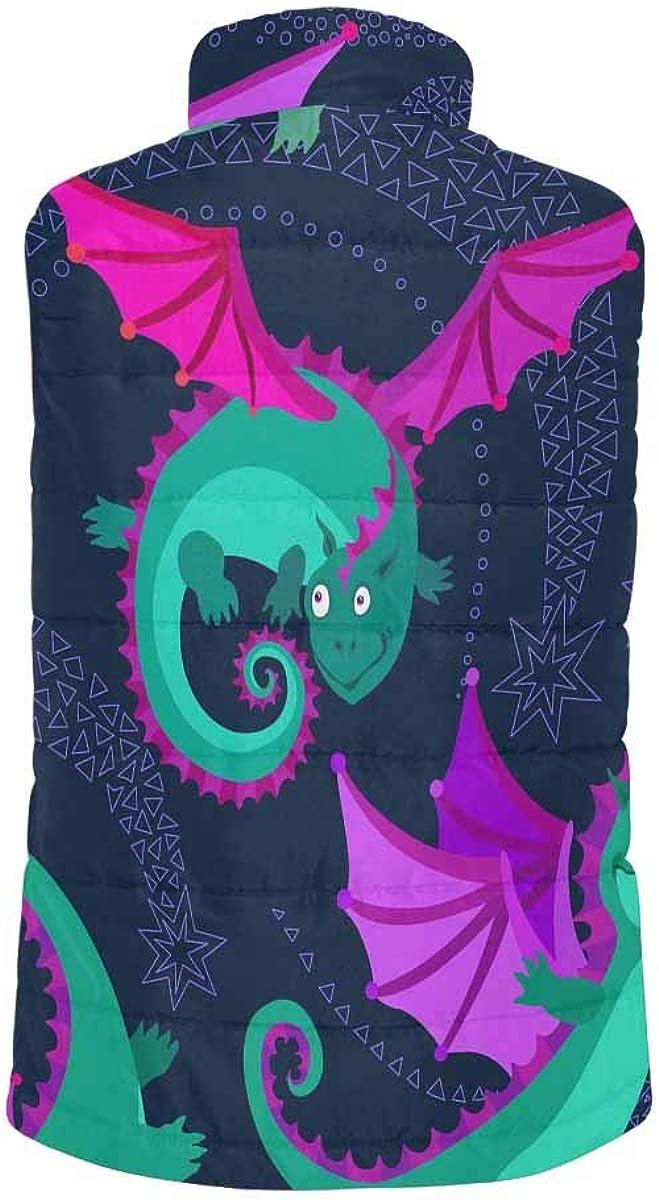 InterestPrint Men's Outdoor Casual Stand Collar Padded Vest Coats Cartoon Little Flying Dragons S