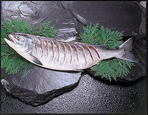 羅臼産銀毛新巻鮭2kg