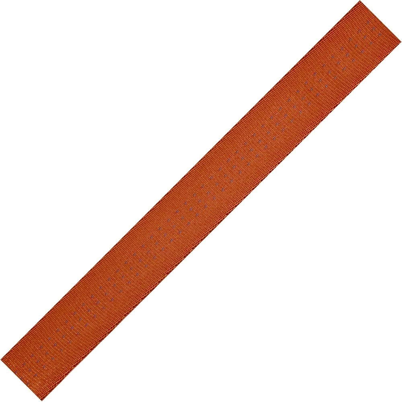 (2.5cm x 9.1m, Rust)  blueeeWater Tubular ClimbSpec Webbing  2.5cm x 9.1m