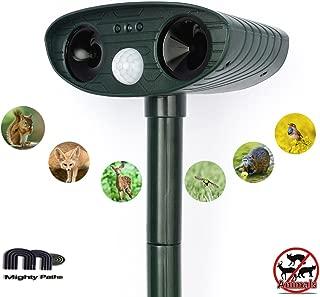 Best raccoon noise repellent Reviews