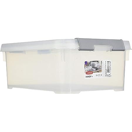 CURVER | Boîte de rangement Handy box Plus 4L + clips Gris avec couvercle, Transparent, 29,4 x 19,4 x 11 cm, Plastique