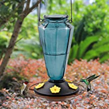 Juegoal Glass Hummingbird Feeders for Outdoors - 22 oz Wild Bird Feeder 5 Feeding Ports, Diamond Shaped Metal Handle Hangi...