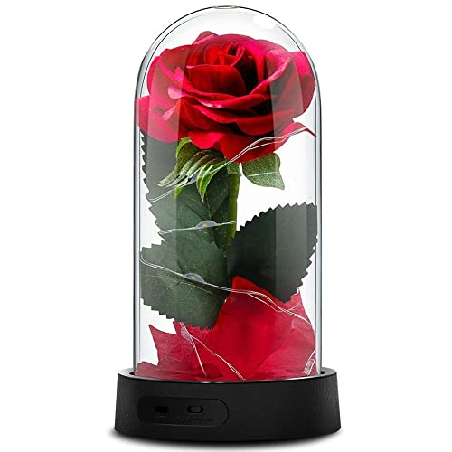 1st Wedding Anniversary Gifts For Wife Amazon