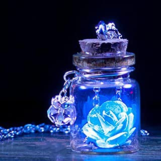Lavany Long Chain Necklace with Glow in The Dark Flower Glass Tiny Wishing Bottle Pendant Jewelry (Blue)