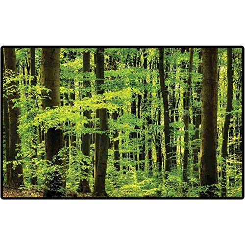Mountain Outdoor Rug Spring Foliage Beech Forest Fresh Morning View in The Mountains Image Runner Doormats Carpet Sets for Home Decor 57x24