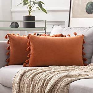 MIULEE Pack of 2 Velvet Soft Solid Decorative Fall Throw Pillow Cover with Tassels Fringe Boho Accent Cushion Case for Couch Sofa Bed 12 x 20 Inch Orange