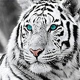 Yingxin34 Rompecabezas 1000 Piezas Calm White Tiger Puzzle Brain IQ Developing Magical Game Jigsaw Puzzle 26x38cm