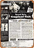 1953品種の珍しい熱帯魚グッズ壁アート