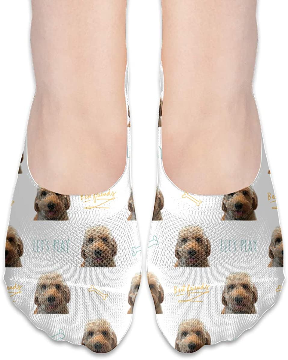 Casual Golden Doodle Dog Socks, No Show Socks For Women Men