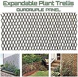 GLANT Lattice Fence Willow Expandable Plant Climbing Lattices Trellis...