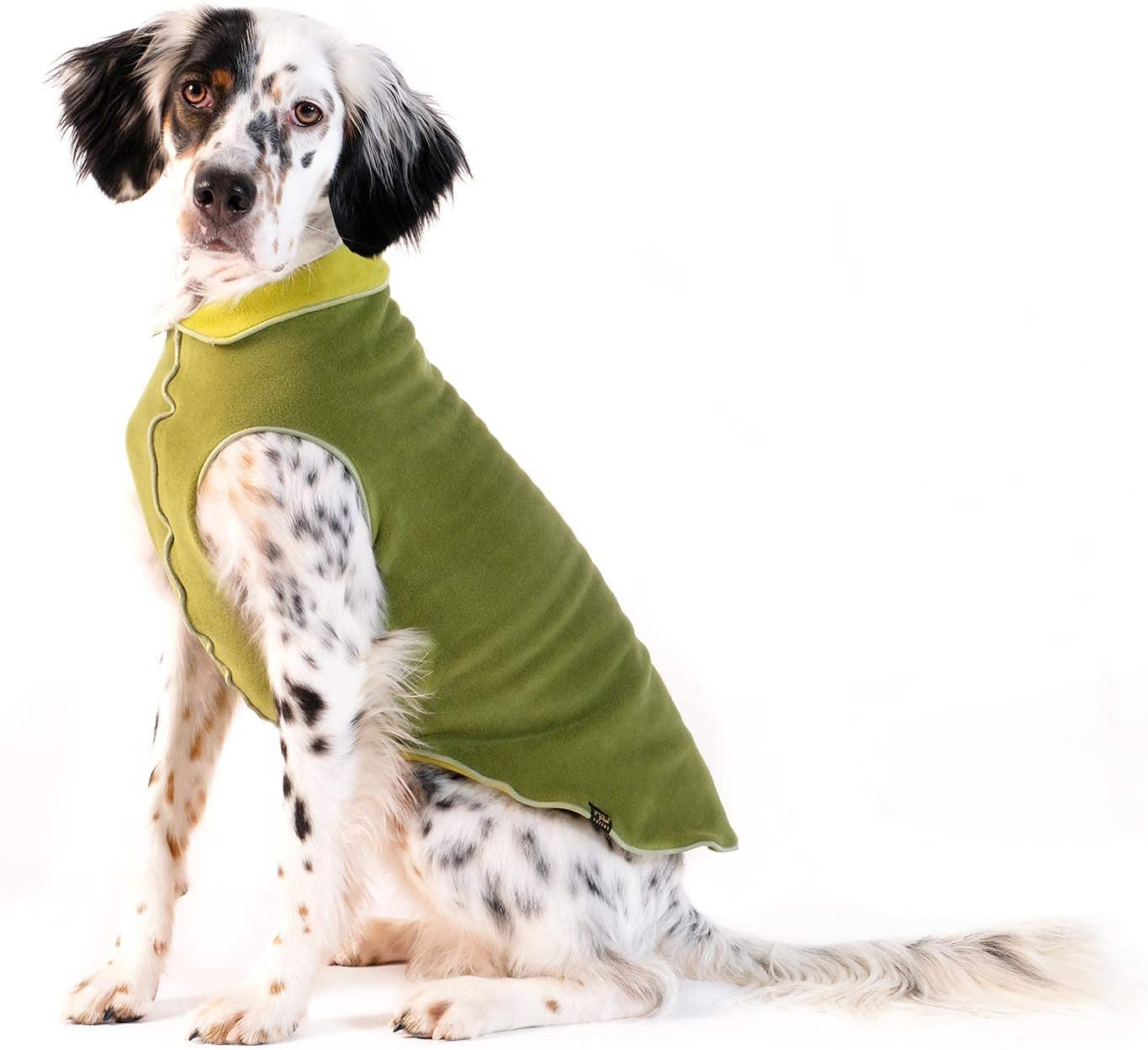 Gold Paw Duluth Double Fleece Dog – Soft War Pullover 70% OFF Genuine Outlet Coat