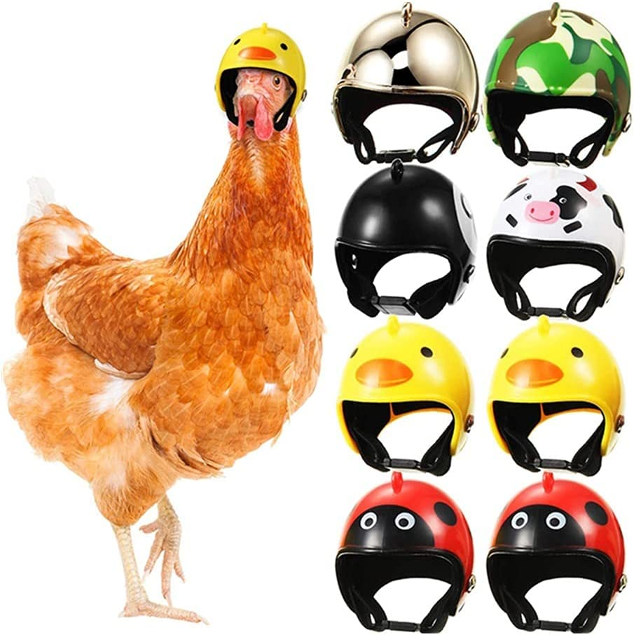 Xhwyf 8 Pieces of Chicken Helmet Funny Great interest Safety Parrot Fort Worth Mall pet