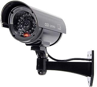 Bw 1100B Bewakingscamera Voor Binnen En Buiten, Met Knipperend Licht, Kogelvormig, Zwart