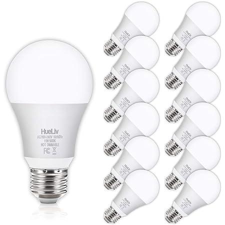 12Pack A19 LED Light Bulbs 100 Watt Equivalent 5000K Daylight White, No Flicker E26 Medium Screw Base Bulbs, 1100Lumens, Non Dimmable