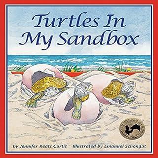 Turtles in My Sandbox audiobook cover art