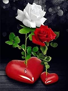 rosa roja y rosa blanca
