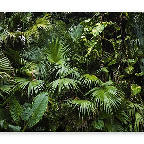 murando Fotomurali adesivi 3D Effetto 441x315 cm carta da parati audoadesiva carta da parati moderna fotomurale carte da paratiFogliame tropicale Monstera b-B-0312-a-a