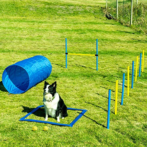Sowsun Dog Agility Equipment, Outdoor Games Exercise Training Obstacle...