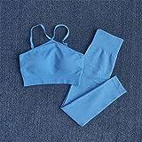 Hbao Frauen Nahtlose Yogaklage hohe Taille schnell trocknend Strumpfhosen + Sport-BH Fitness Lauftrainingsanzug Trainingskleidung Sportkleidung Jogging (Color : Blue, Size : Small)
